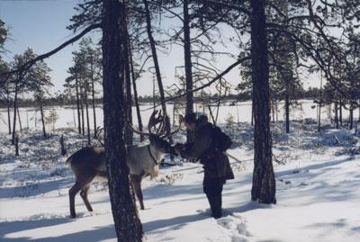 Foto_artikkel_1999_novikova